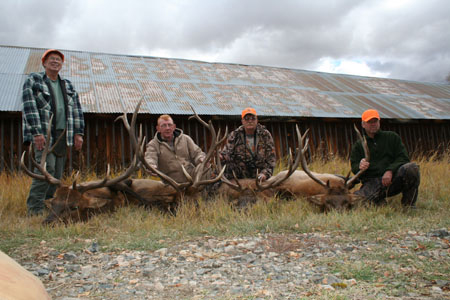 Elk Hunts with Grand Slam Outfitters