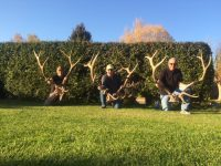 Grand Slam Outfitters Elk Hunt