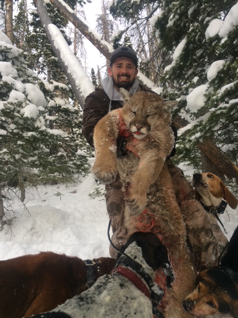 Grand Slam Outfitters Mountain Lion Hunts