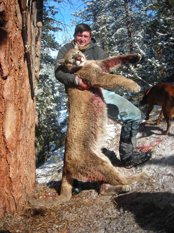 Grand Slam Outfitters Mtn Lion 010